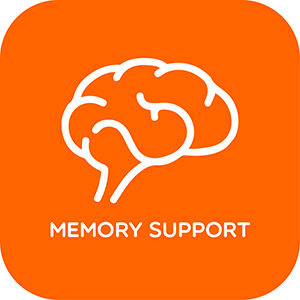 Memory Support